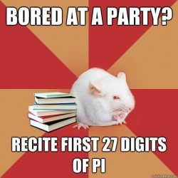 A mouse shows that parties can be dull